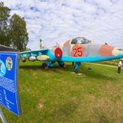 Боровая Су-25