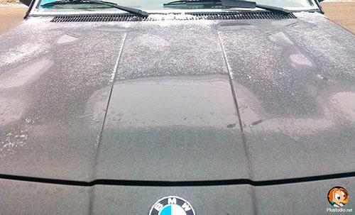 Мокрый нос BMW